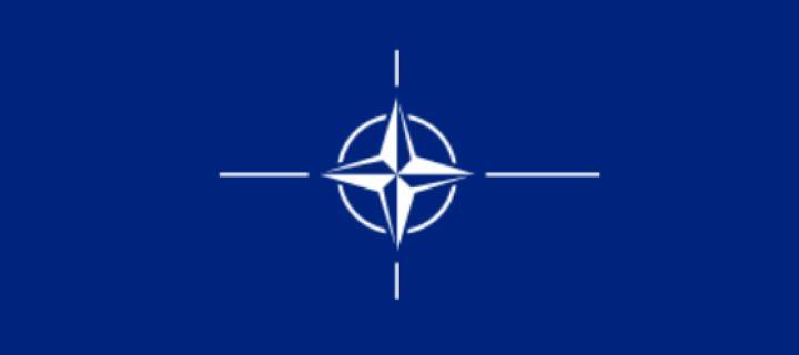 TÜRKİYENİN NATOYA GİRİŞİ